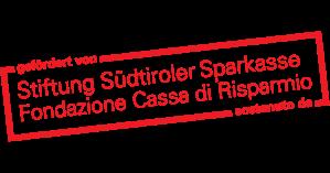 Logo Sponsor Sparkassenstiftung ex web